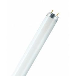 36W  barevná zářivka  Philips žlutá